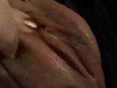 চমৎকার, স্বামী আমেরিকান এইচডি সেক্স ভিডিও ও স্ত্রী
